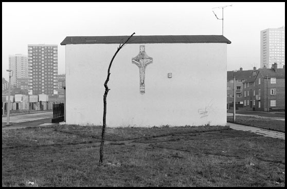 tree and cross